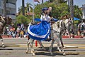 Blue Dress and Horse (4912819959).jpg