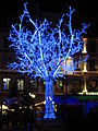 Blue tree (Strasbourg).jpg