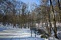 Bois du Pottelberg - Pottelbergbos 23.jpg