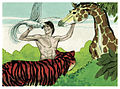 Book of Genesis Chapter 1-15 (Bible Illustrations by Sweet Media).jpg