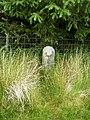 Boundary stone on the north side of Rhialgwm - geograph.org.uk - 1398578.jpg
