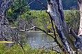 Brancheau Unit Wetland (36056125702).jpg