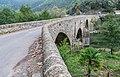 Bridge over Herault River in St-Julien-de-la-Nef (2).jpg