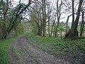 Bridleway Through Blackwell Spinney in Carlton Parish - geograph.org.uk - 394845.jpg