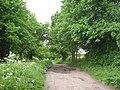 Bridleway near Bradley Farm - geograph.org.uk - 807434.jpg