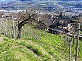 Brixen, Province of Bolzano - South Tyrol, Italy - panoramio (29).jpg