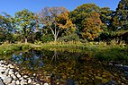 Brooklyn Botanic Garden New York November 2016 004.jpg