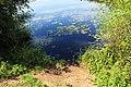 Brzeg Jeziora Topiło.jpg