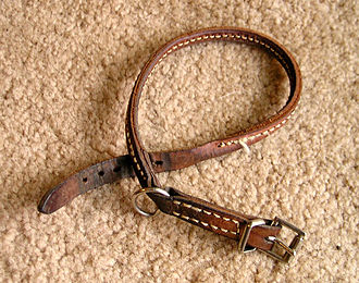 Dog collar - Leather buckle collar with traditional buckle.