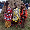 Buganu Festival 2019.jpg