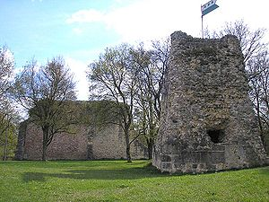 Güssenburg Castle - Ruins of the Güssenburg. The keep and a portion of the curtain wall are visible