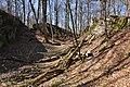 Burgruine-Hattstein-Halsgraben-JR-E-3739-2020-04-02.jpg