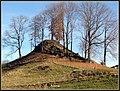 Burgstall - panoramio.jpg