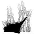 Burning Ship Fractal Monochrome.png