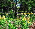 Butchart Gardens - Victoria, British Columbia, Canada (28573353434).jpg