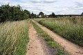 Butt Lane, Fakenham Magna - geograph.org.uk - 1360756.jpg