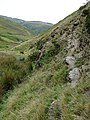 By Nant Gwrach, Powys - geograph.org.uk - 1529670.jpg