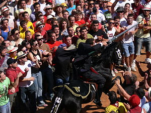 Corrida de sortija - Festival of Sant Joan. Ciutadella de Menorca
