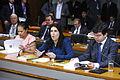 CDR - Comissão de Desenvolvimento Regional e Turismo (16530225959).jpg