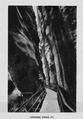 CH-NB-Berner Oberland-nbdig-18266-page007.tif