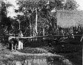 COLLECTIE TROPENMUSEUM Traditionele suikerrietmolen in Matoer Padangse Bovenlanden Sumatra`s Westkust TMnr 60003611.jpg