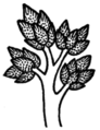 COM V1 D056 Unknown tree.png