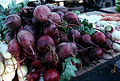 CSIRO ScienceImage 2779 Radishes.jpg