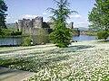 Caerphilly Castle Wales.jpg