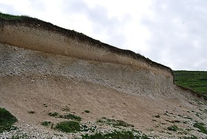 Pedology - Soil Profile on Chalk at Seven Sisters Country Park, England