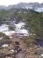 Camí cap a Prat de Cadí (febrer 2007) - panoramio.jpg