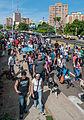 Caminata por los perros y animales Maracaibo 2012 (3).jpg