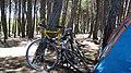 Camping de Arenas Verdes - panoramio (1).jpg