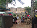 Campus University of Yaoundé I (2014) 'chamignons' 1.jpg