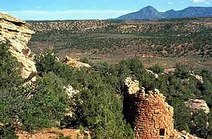 Canyons of the Ancients National Monument - Image: Canyons of the Ancients National Monument