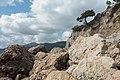 Cape Aya landscape preserve - August 2021-2.jpg