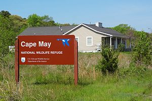 Cape May National Wildlife Refuge - Image: Cape May NWR Office