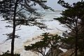 Carmel By The Sea Image.jpg