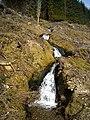 Cascade in Ardgartan Forest - geograph.org.uk - 1285760.jpg