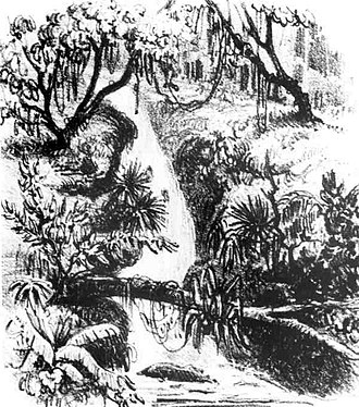 Cascades Park (Tallahassee) - A drawing by Comte Francis de Castelnau depicting the waterfall (1839)