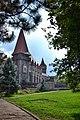Castelul Huniazilor in natura rama.jpg
