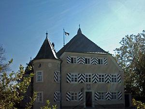 Tannhausen - Tannhausen castle