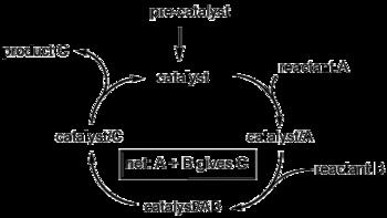 Ciclo catalítico para conversão de A e B em C