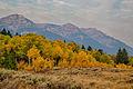 Centennial Mountains WSA (9441056485).jpg