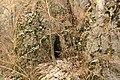 Cheile Vârghișului - Varghis Gorges - panoramio (12).jpg