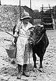 Cheshire Agricultural College, Holmes Chapel HU91978.jpg