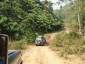Chiang Rai Province P1110669.JPG