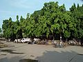 Chinsurah Railway Station Area - Hooghly 20170514072411.jpg