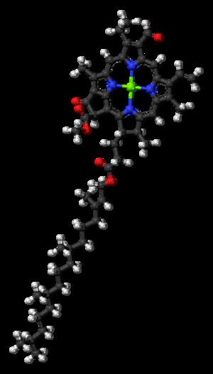 Chlorophyll b - Image: Chlorophyll b 3D balls