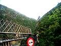 Chrea Route chiffa P4069193.JPG