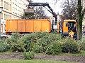 Christbaum Verwertung 270452.jpg